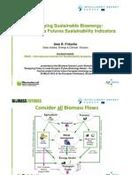 Supplying Sustainable Bioenergy Fritsche