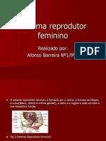 afonsosistemareprodutorfeminino-100411072626-