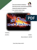CICLO DEL FÓSFORO