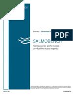 SalmoBench-Nov11-E20
