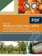 Guia de P Mas L Biodiesel