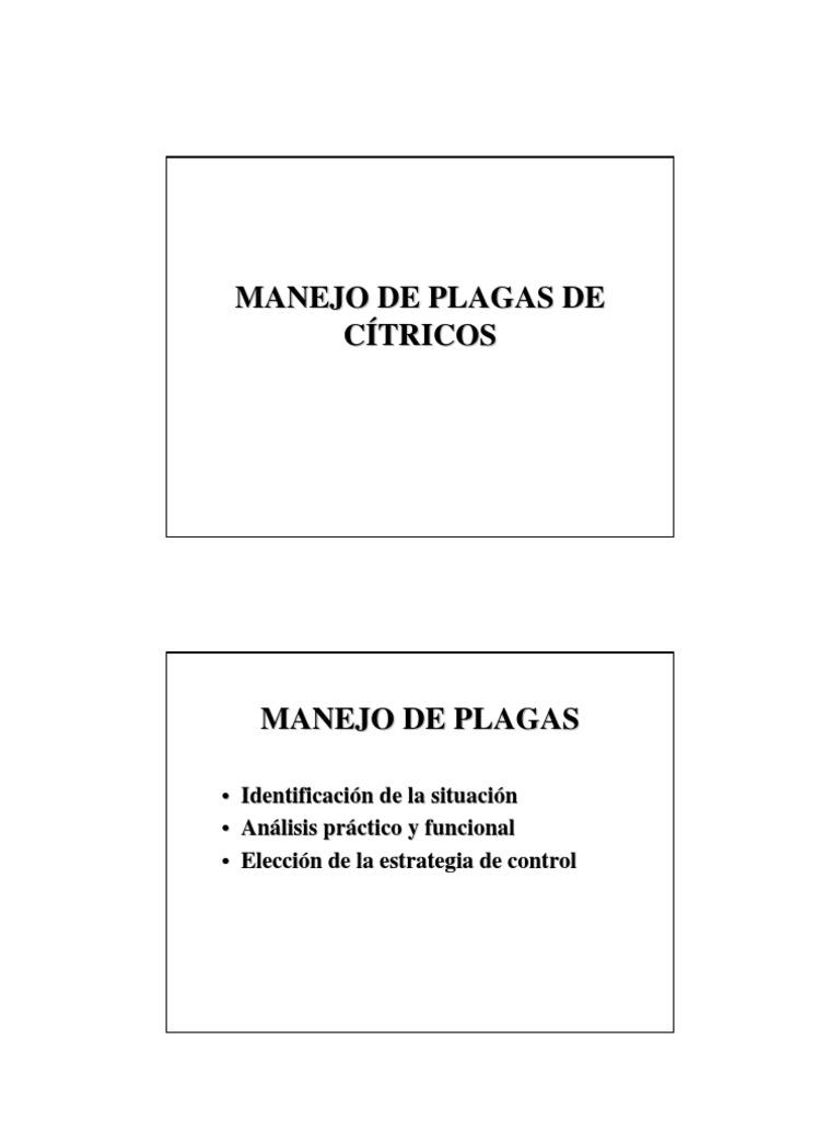 PLAGAS DE CITRICOS PVF 06 1.pdf