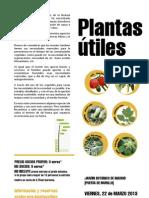 Dip Tico Plant a Su Tiles