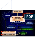Respirology_^New Insight of COPD^by Prof.adji
