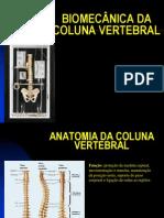 Biomecanica Da Coluna Vertebral