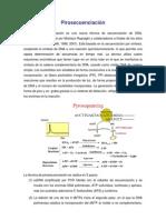 1-pirosecuenciacion