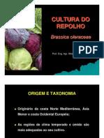 Repolho a Cultura - Almanaque Do Campo[1]