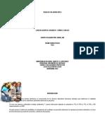 Trabajo Final 102059-408 Colaborativo 2