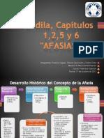 Ardila capítulos 1,2,5 y 6.pptx