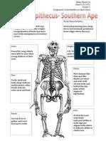 australopithecus input chart