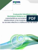 Informe Mortalidad Materna 2010