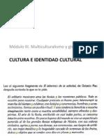 Cultura e Identidad Cultural