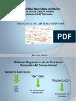 Presentación1 Sistema Nervioso Fiosiologia