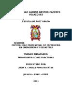 Monografia de Fracturas