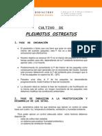 Cultivo de Pleurotus Ostreatus