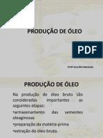 PRODUÇÃO DE ÓLEO