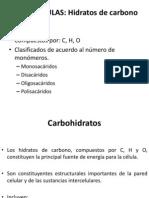 04-Carbohidratos