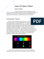 Theories of Colour Vision