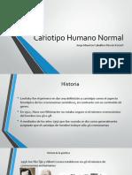 Cariotipo Humano Normal.pptx