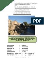 ANEXO VI Contenido minimo de la  Evaluación Preliminar DR Rio Higueras