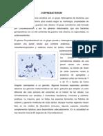 Difteria - Copia
