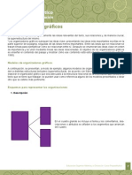 U3_Organizadores Graficos