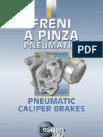 Pinza 1