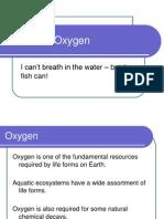 19 - Dissolved Oxygen