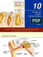 The Nervous System Sensory Systems