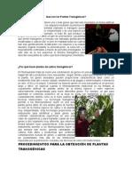 Plantas Transgénicas.doc