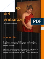 SAR - Fisiología del embarazo