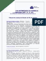 TJRJ_-_responsabilidade_civil_violacao_da_intimidade_da_honra_e_da_imagem.pdf
