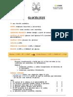 Cuadernillo Metabolismo Jano
