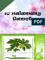 10 Halamang Gamot