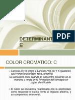 Determinante Color