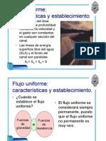 51083631-flujo-20uniforme-1.pdf