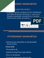 PITZADURAK SAIAKUNTZA