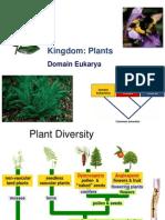 Plants.sap.2013