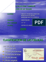 dclasesdecelulas-090602102221-phpapp02