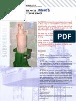 Submersible Motor Print