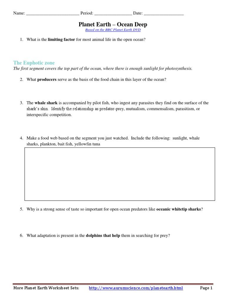 Predator And Prey Worksheet Worksheet Pages – Predator Prey Worksheet