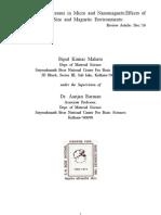 Review Magnetization dynamics