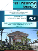 Profil Puskesmas Payangan.ppt