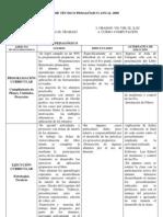 Informe Tecnico Pedagogico Nivel Secundaria