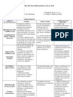 Informe Tecnico Pedagogico Nivel Primario