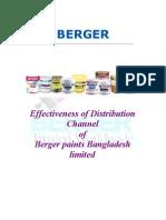 internship report on Marketing Strategy  of BERGER