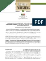 NIDIFICACIÓN DE UNA PAREJA DE HALCONES PLOMIZOS DEL SUR (Falco femoralis femoralis) EN UN POSTE DE ELECTRICIDAD EN EL NORESTE PATAGÓNICO, ARGENTINA
