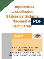 Competencias Bg (1)