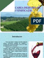 Valorificarea deşeurilor din vinificaţie