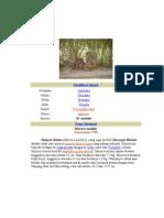 Klasifikasi ilmiah